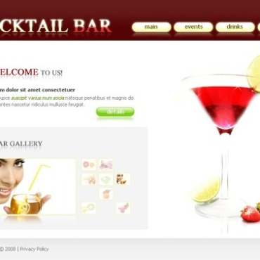 Cocktail Bar Flash Template