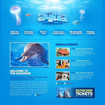Dolphin Website Template