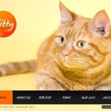 Cat Flash Template
