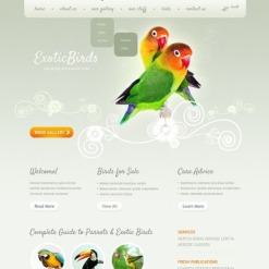 Exotic Pets Website Template
