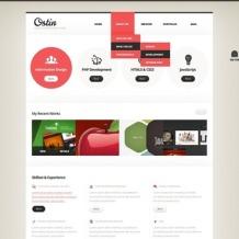 Designer Portfolio Responsive Website Template