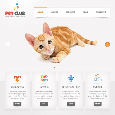 Animals & Pets Moto CMS HTML Template