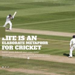 Cricket Website Template
