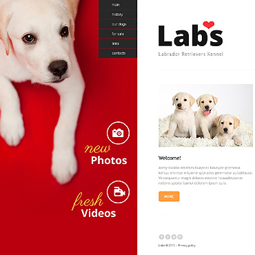 Dog Website Template