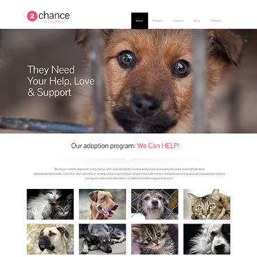 Animal Shelter Responsive WordPress Theme