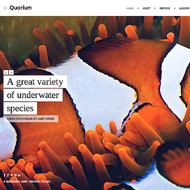 Fish Website Template