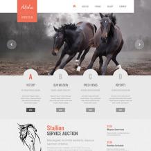 Horse Responsive Website Template