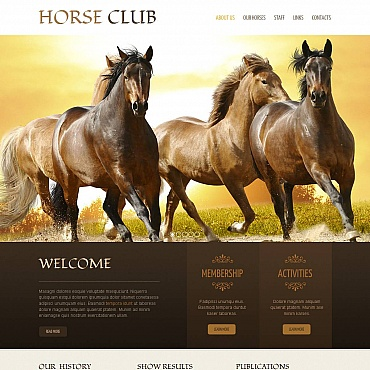 Horse Moto CMS HTML Template
