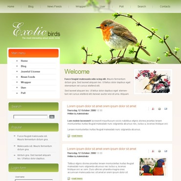 Birds PSD Template