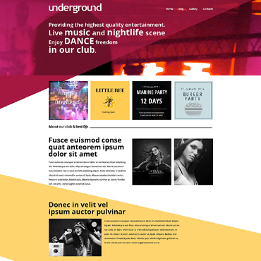 Night Club Drupal Template
