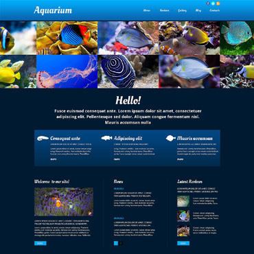 Fish Responsive Website Template