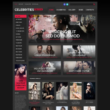Celebrity Website Responsive WordPress Theme