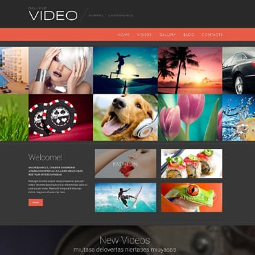 Video Gallery Responsive WordPress Theme