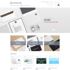 Business Responsive Magento Theme